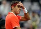 "Del Potro ceturto reizi piecos gados nespēlēs ""Australian Open"""