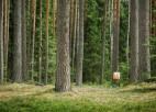 Marta beigās sāksies jaunā orientēšanās sezona Liepājas apkārtnē