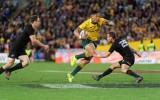 Vai Austrālija beidzot spēs uzvarēt Jaunzēlandē?