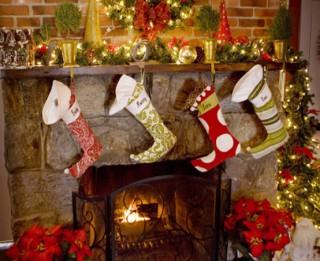 Iecienītākās Ziemassvētku tradīcijas – eglītes meklēšana un mājas rotāšana