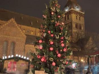 Aicina pieteikt projektus Rīgas Ziemassvētku egļu  noformējuma veidošanai
