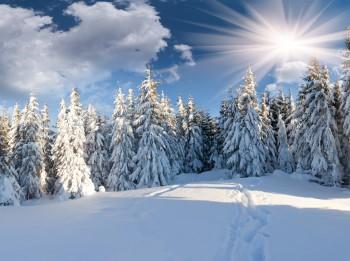 Ziemassvētki- Saules gada sākums. Senās tradīcijas un rituāli