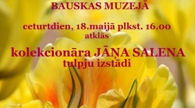 Starptautiskā muzeju nakts Bauskas un V.Plūdoņa muzejos
