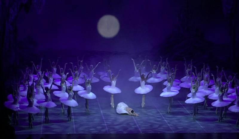 """Rīgā radīs baletu """"Gulbju ezers ar 48 gulbjiem"""""""
