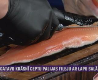 Video: Zivkopis Lauris Apsis rāda, kā izfilēt arktisko paliju