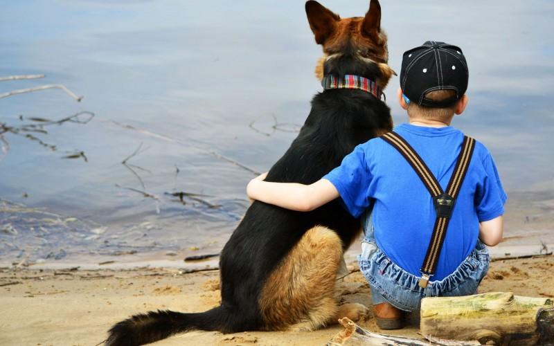 """Izdevniecība """"Avots""""  piedāvā Stenlija Korena grāmatu """"Kā saprasties ar suni"""""""